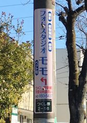 フォトスタジオ モモさま